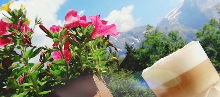 Adrenalin Blumen Und Kaffee