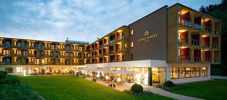 Albert Hotel4