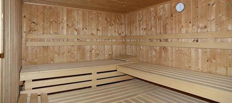 Alpengasthof Wellness Sauna2