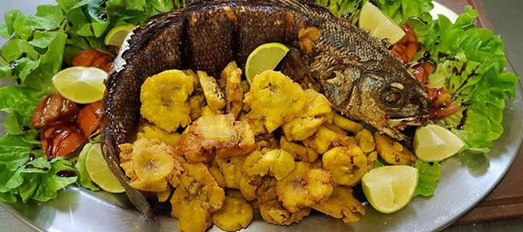Alpenhotel Kulinarik Fisch