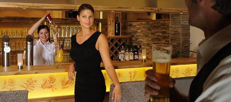 Alpenjuwelgarni Bar2