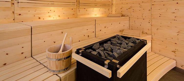 Alpina Wellness Sauna 1