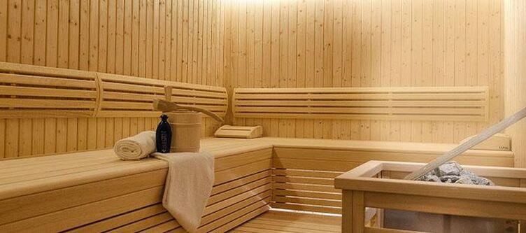 Alpina Wellness Sauna 3