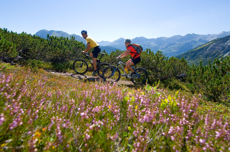 Altenmarkt Zauchensee Tourismus Sport Natur Mountainbiken Berge2