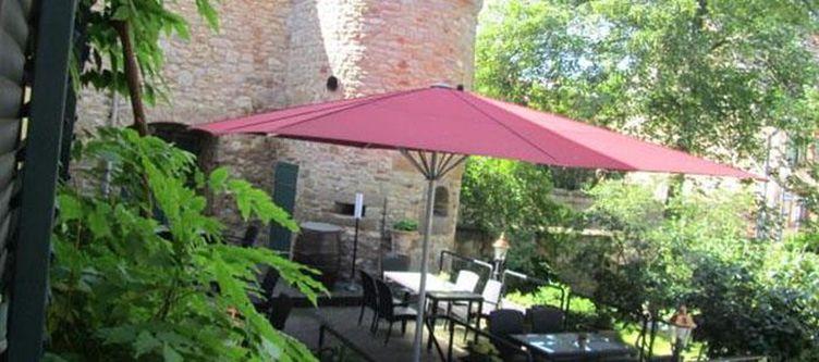 Amschloss Gastgarten2