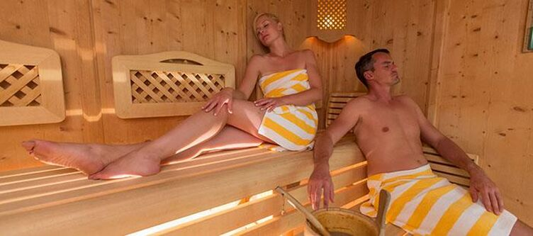 Austria Wellness Sauna2