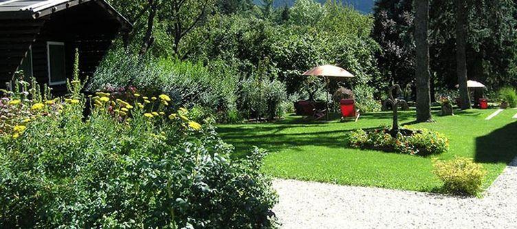 Azalea Garten2