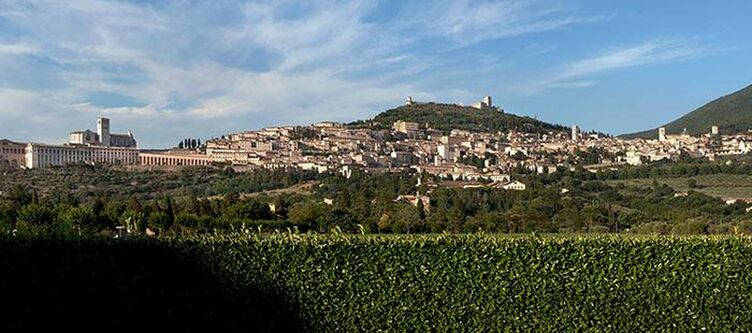 Bellavista Assisi