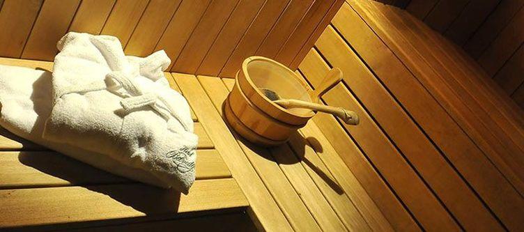 Belvedere Wellness Sauna