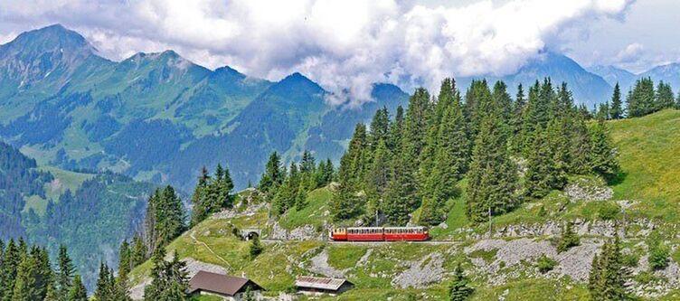 Berner Oberland Bergbahn 2
