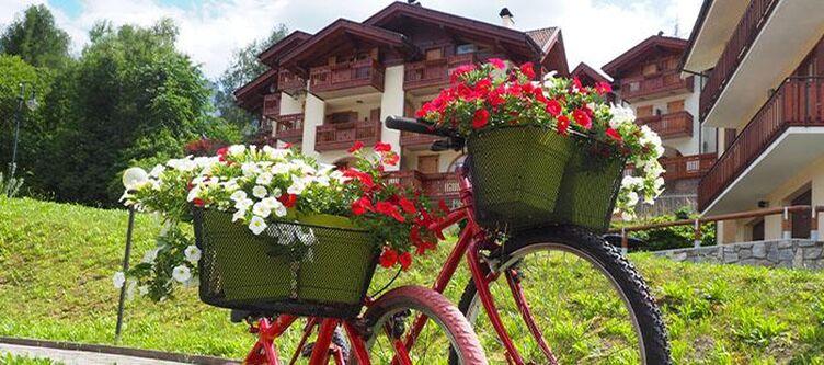 Bonetei Blumen3