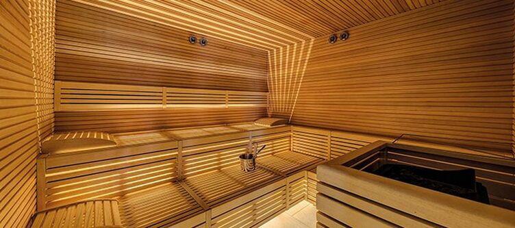 Bosco Wellness Sauna2