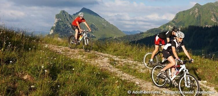 Bregenzerwald Sommer Rad 3