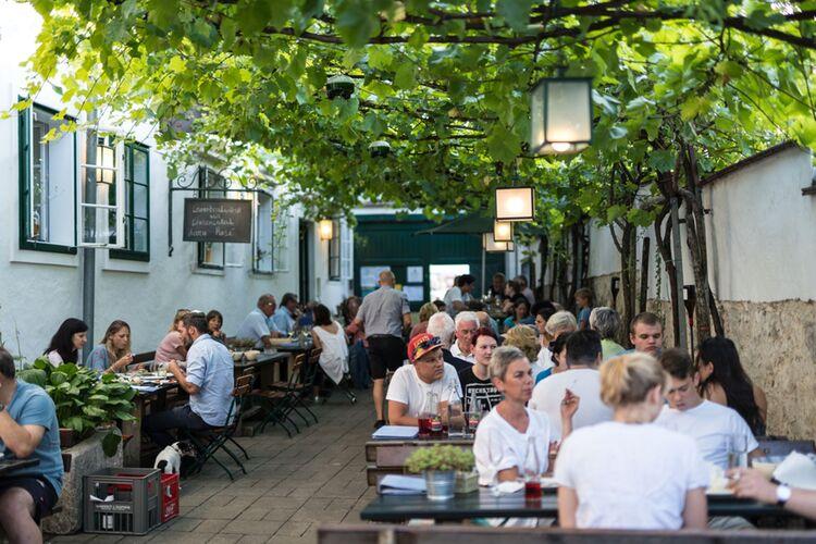 Burgenland Tourismus Buschenschank Schandl Hq Birgit Machtinger 156