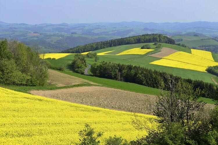 Burgenland Tourismus Suedburgenland Ippisch