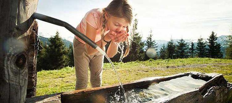 Chalet E Brunnen