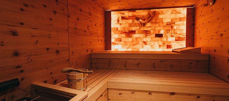 Chalet Wellness Sauna