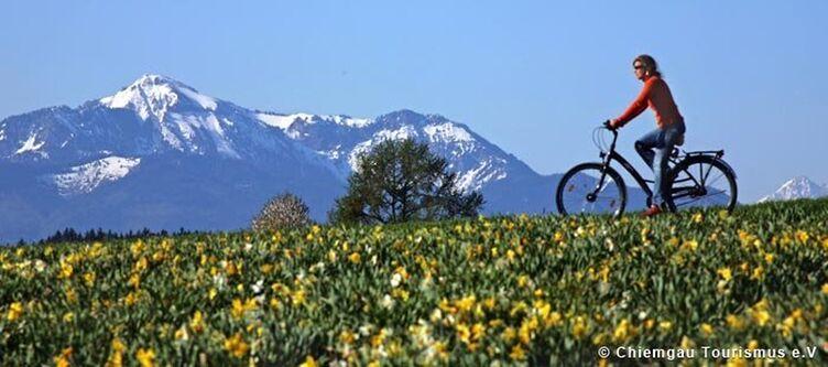 Chiemgau Radfahren Im Fruehling