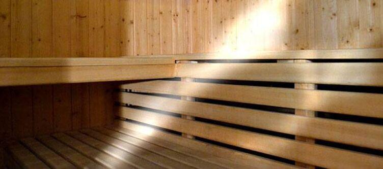 Corona Wellness Sauna