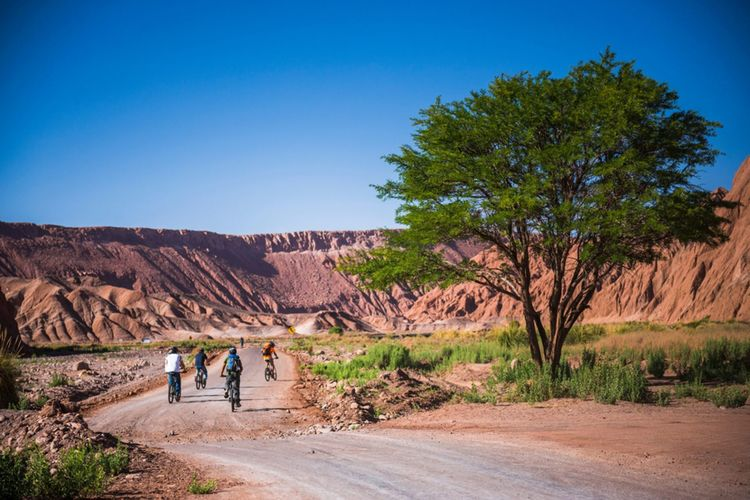 Cycling In The Katarpe Valley Atacama Desert North Chile