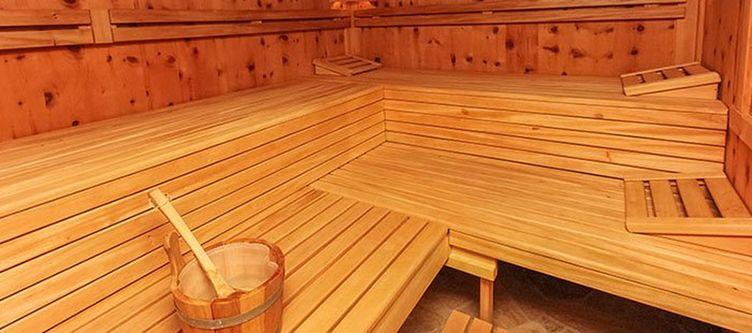 Dagnhof Wellness Sauna3