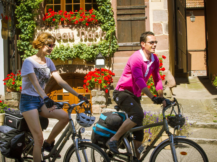 Dambach La Ville Veloroute Du Vignoble D Alsace Eurovelo 5 Adt Bas Rhin Infra Dsc8007