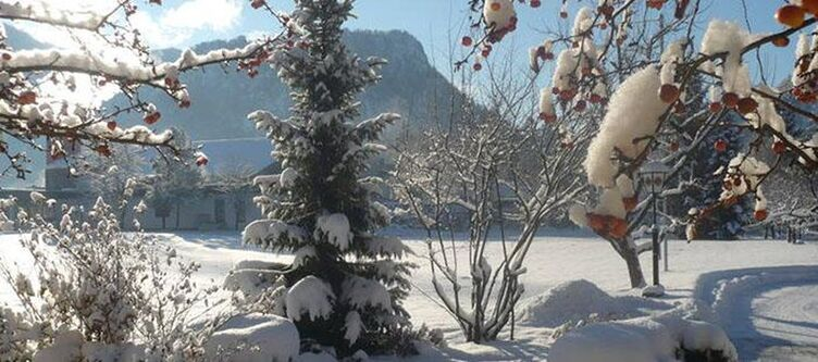 Dasfalkenstein Panorama Winter