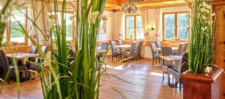 Dasfalkenstein Restaurant