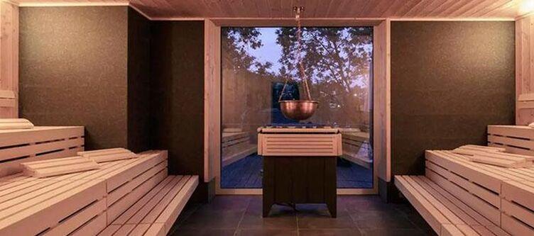 Diedrich Wellness Sauna2