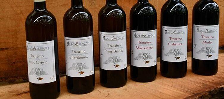 Dolomia Kulinarik Wein