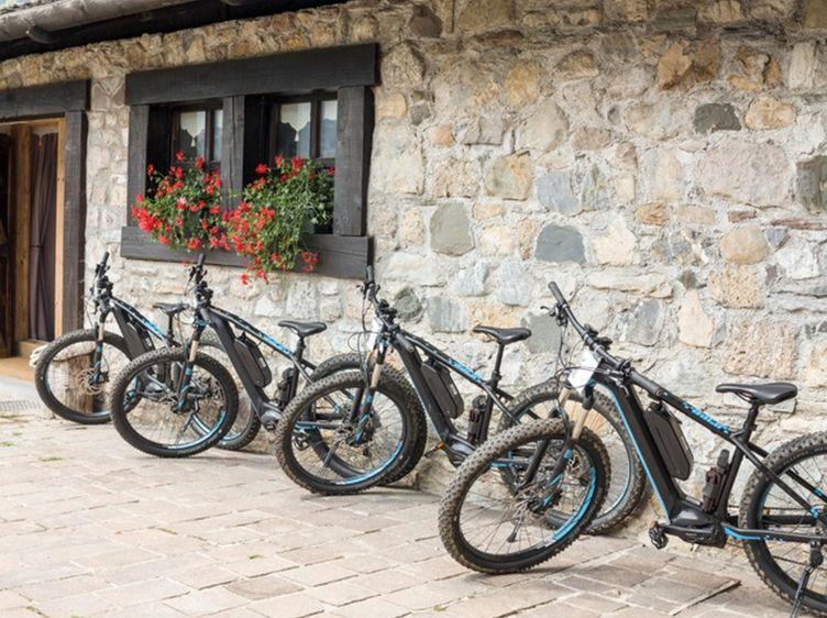 E Bike 1