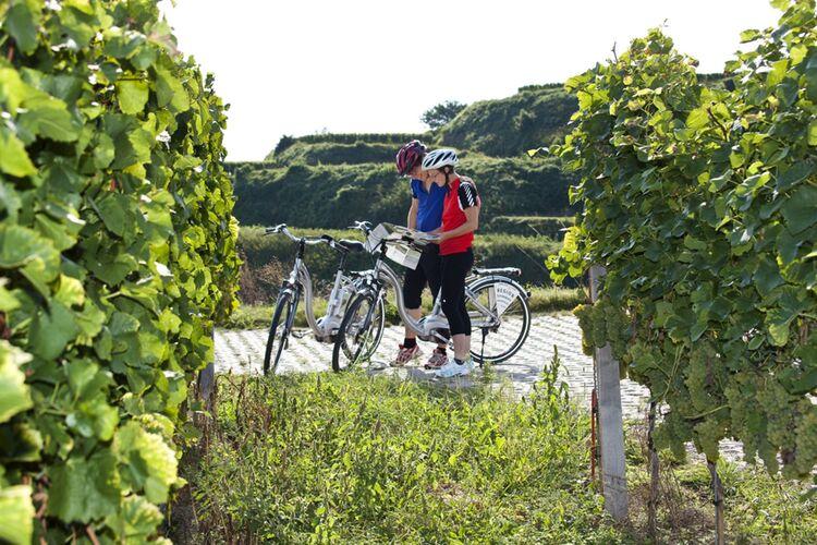E Biken Mriemann 2011 10 06 1 Gross