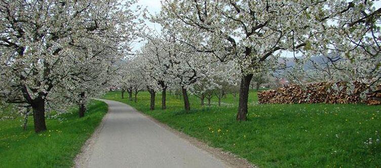Eberhard Park