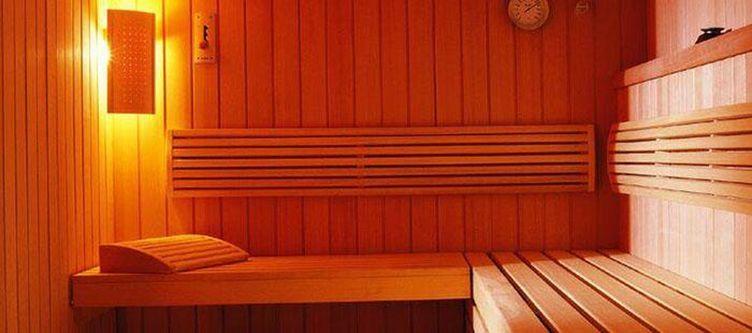 Edelweiss Wellness Sauna