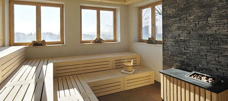Edermann Wellness Sauna2