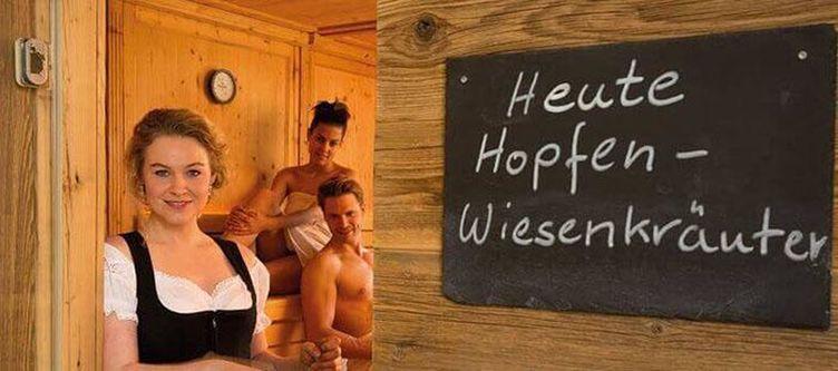 Eisvogel Wellness Sauna3