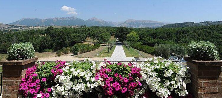 Eliceto Panorama