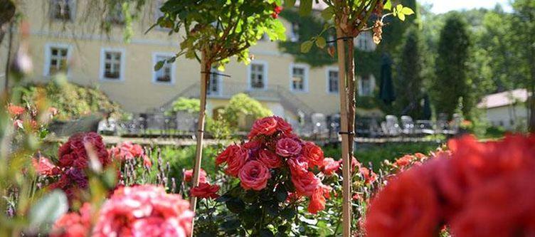 Ernestgruen Garten Blumen