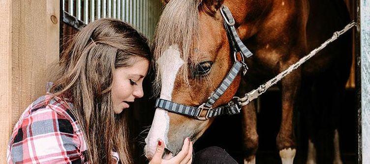Familotel Pferd2