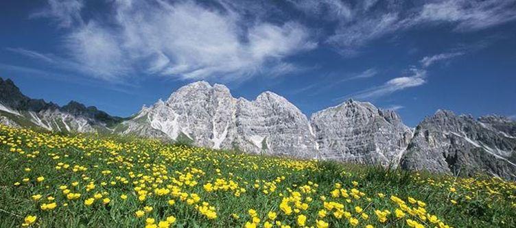 Fernau Berge