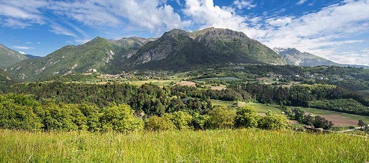 Flora Panorama