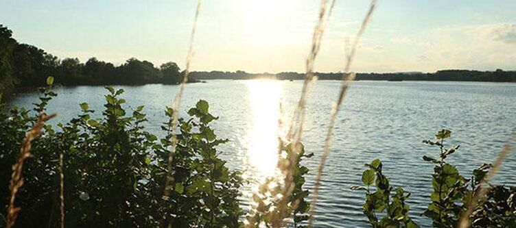 Forster Echinger Stausee