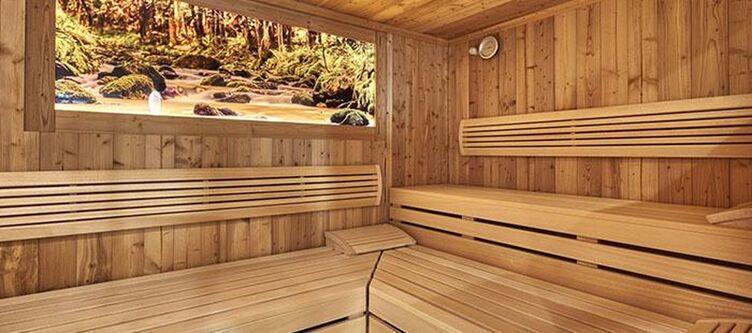 Fritz Wellness Sauna