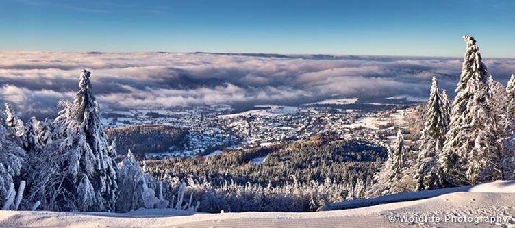 Fritz Winter Landschaft