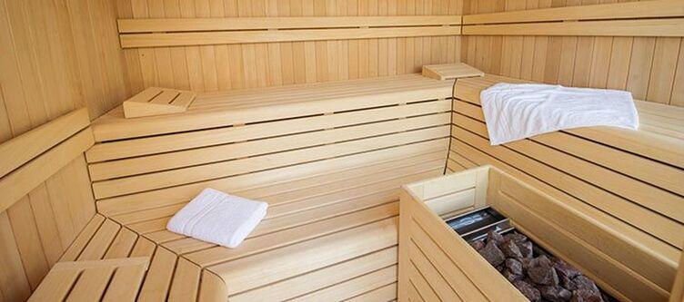 Gregori Wellness Sauna2