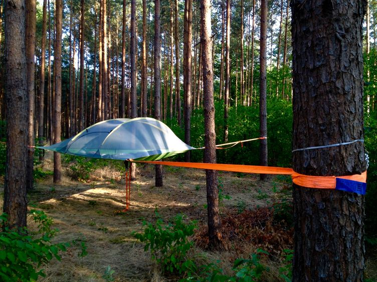 Hanging Tent Stingray 3