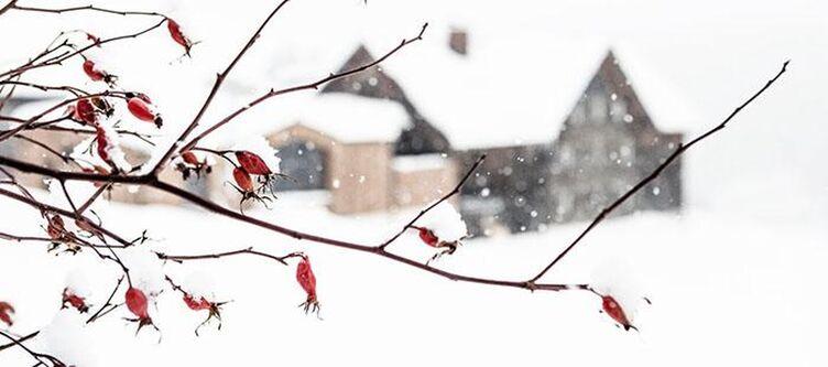 Holzgauerhaus Winter