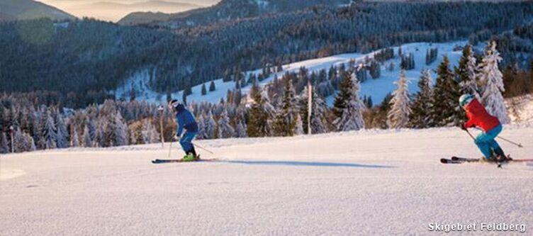 Kokoschinski Ski