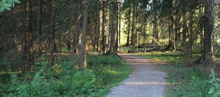 Landhaus Wald