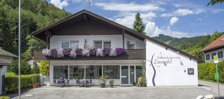 Lavendel Hotel3